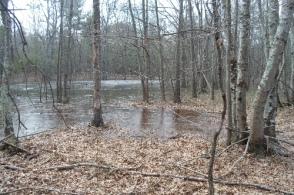 Sinkhole pond