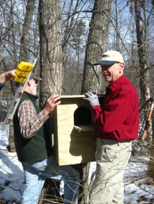 Jerry and Malcolm hang the Barred Owl Box made by Don Plants