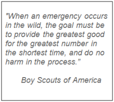 boy scout quote