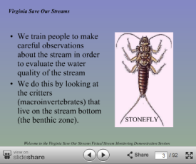 Online benthic monitoring training from VA Save Our Streams