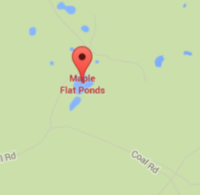 Maple Flat Ponds