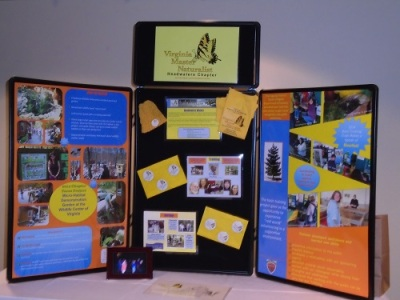 Display Board - Newport News.500