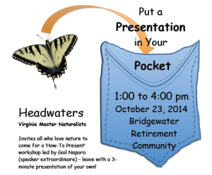pocketpresentationflyer