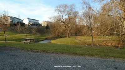 Bridgewater Arboretum at Cooks Creek.600