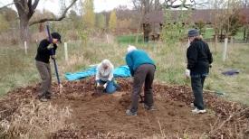 gardenwork10.30.14