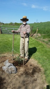 Malcolm planting coral honeysuckle at Cooks Creek Arboretum. (Grown from a cutting at his home place near Kilmarnock.