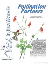 pollinationpartners.carolheiser