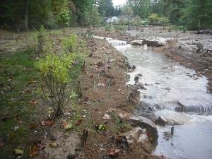Arboretum stream on October 2, three days after flooding.