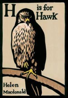 H.isforHawk
