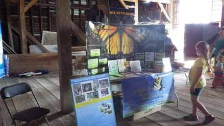 Kites and Critters, Carolyn Ford Farm, April 17, 2016