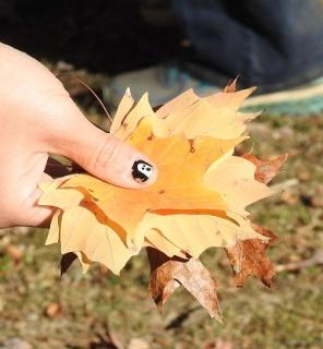 Patti's had full of maple leaves