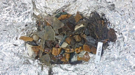 The contents of an adult California condor contained smoothly polished glass and stones and the letter R