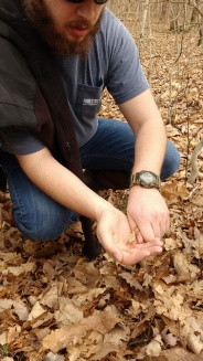 Allen and Shelley's son Stuart with a Spring Peeper nicely camouflaged as a dried leaf.