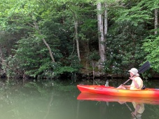 Dave paddling along the shore of Fairy Stone Lake on Sunday, June 23. Photo by John Bauman.