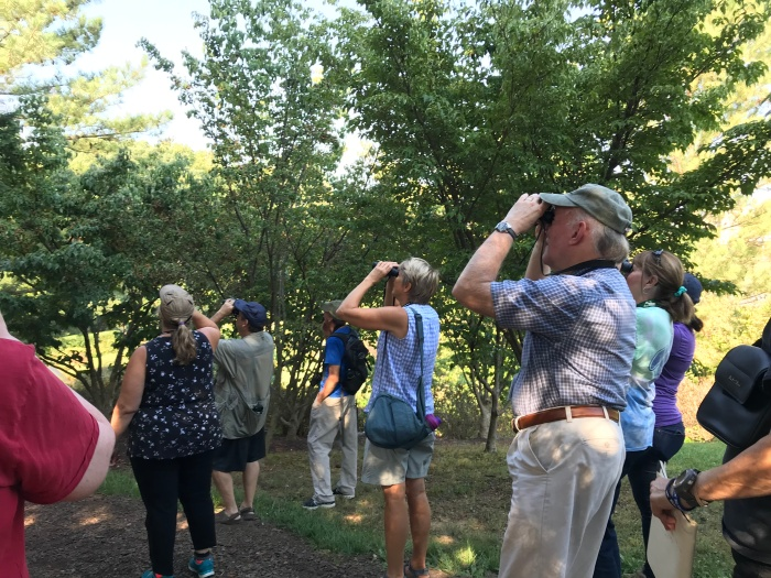 Birding Basics at Edith J Carrier Arboretum1.jpg