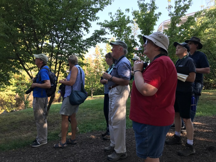 Birding Basics at Edith J Carrier Arboretum2.jpg
